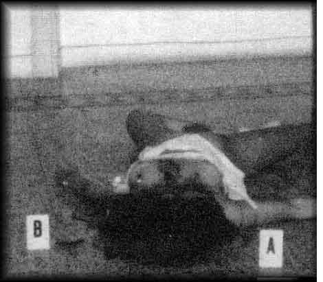 il cadavere di simonetta cesaroni