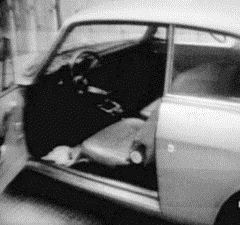 Omicidio Pasolini: la fuga di Pino Pelosi, interrogatori