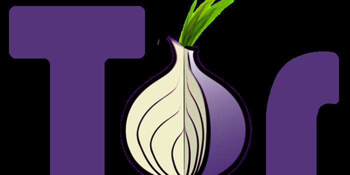Inchiesta – Deep Web, l'internet invisibile. #2 Nel mondo di Tor