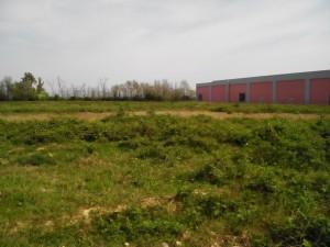 Il campo dove è stata trovata Yara