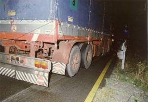 camion bergamini 2